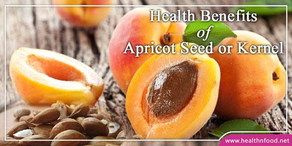 Apricots Surprising Health Benefits
