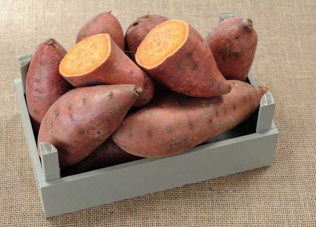 Potato Fiber Content