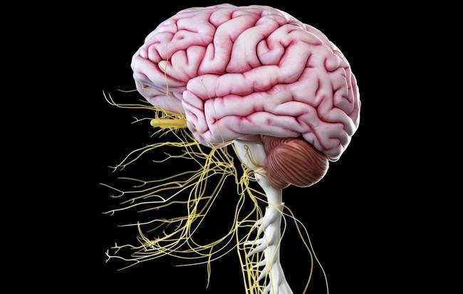 Alcoholic Neuropathy Treatment