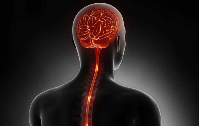 Amyotrophic Lateral Sclerosis Causes and Treatment