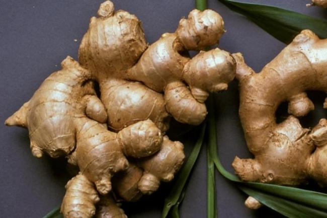 Ginger Upset Stomach