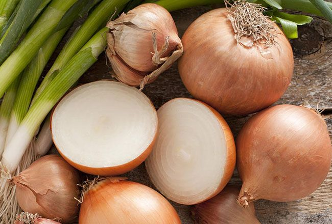 Onions, Shallots, and Leeks