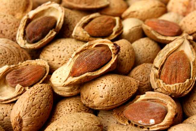 How many Almonds to Eat Per Day for Weight Loss
