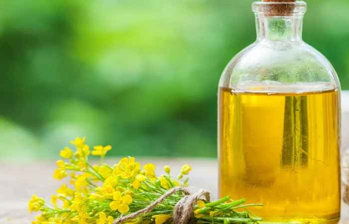 Canola Oil For High Blood Pressure