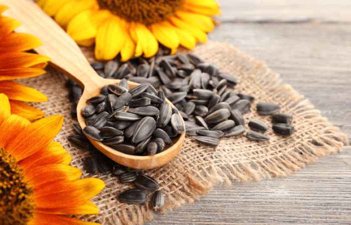 Sunflower Seeds for Weight Loss