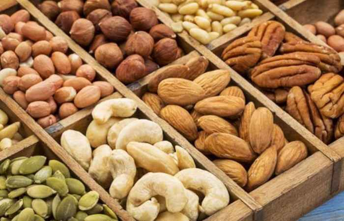 Nuts for Healthy Long Life