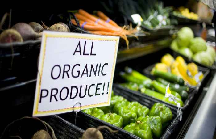 Organic Produce for Healthy Long Life