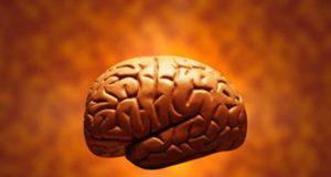 Workout boost brain power