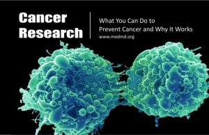 What You Can Do to Prevent Cancer and Why It Works