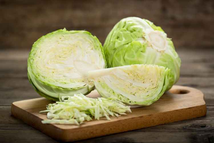 Cabbage Low Carb Vegetable