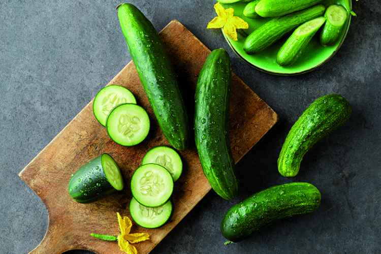 Cucumbers Low Carb Vegetable