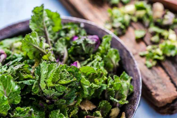 Kale Low Carb Vegetable