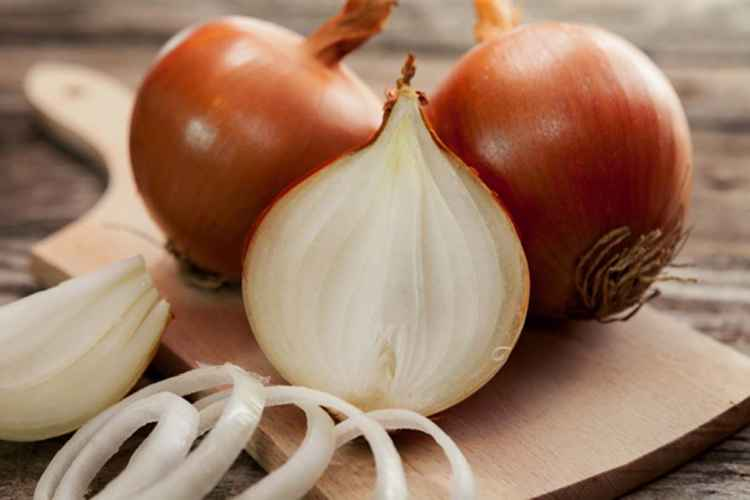 Onions Low Carb Vegetable