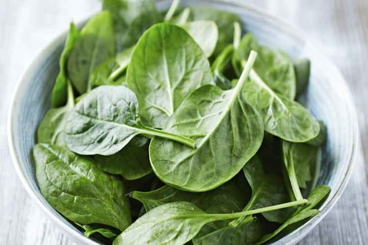 Spinach Low Carb Vegetable